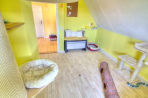 Zimmer Links im Katzenhotel