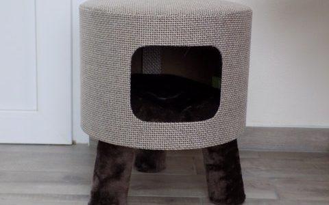 Katzenhocker Huebii