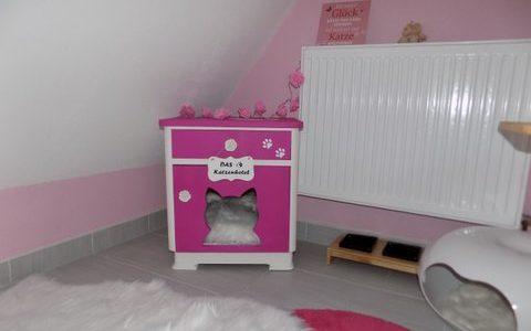 Der neue Katzennachttisch im Katzenhotel
